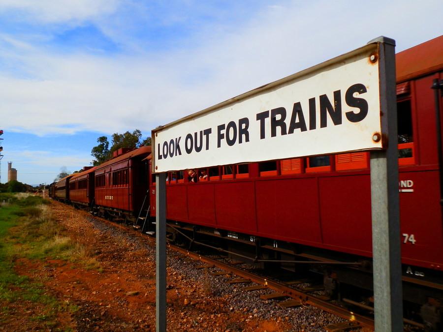 Found one! Pichi Richi Railway, Quorn