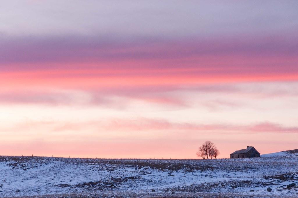 Aubrac buron et arbre solitaires lain g flickr for Buron aubrac