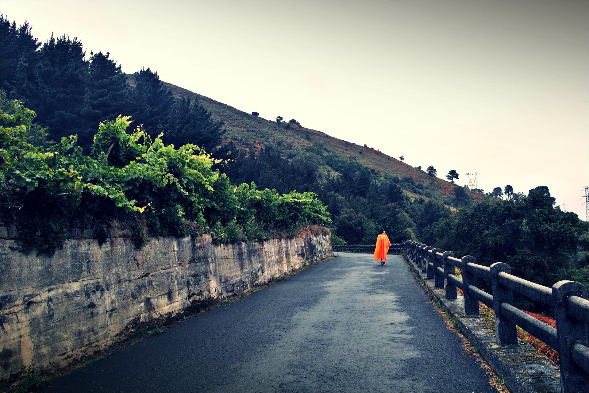 비가 내린 후-'카미노 데 산티아고 북쪽길. 빌바오에서 포르투갈레테. (Camino del Norte - Bilbao to Portugalete)'