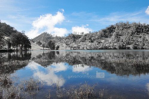 Foto Ranu Kumbolo Dengan Picture Style Infrared