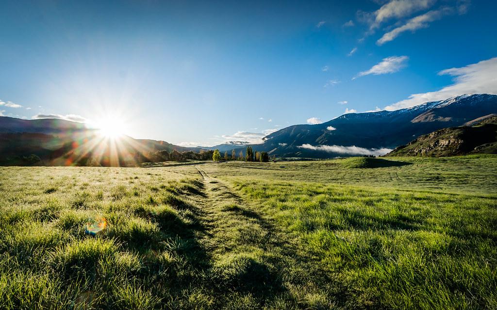 Rolling green pasture bendemeer new zealand curtis for Landscape jobs nz