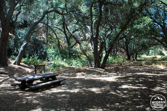 wildwood-park-36