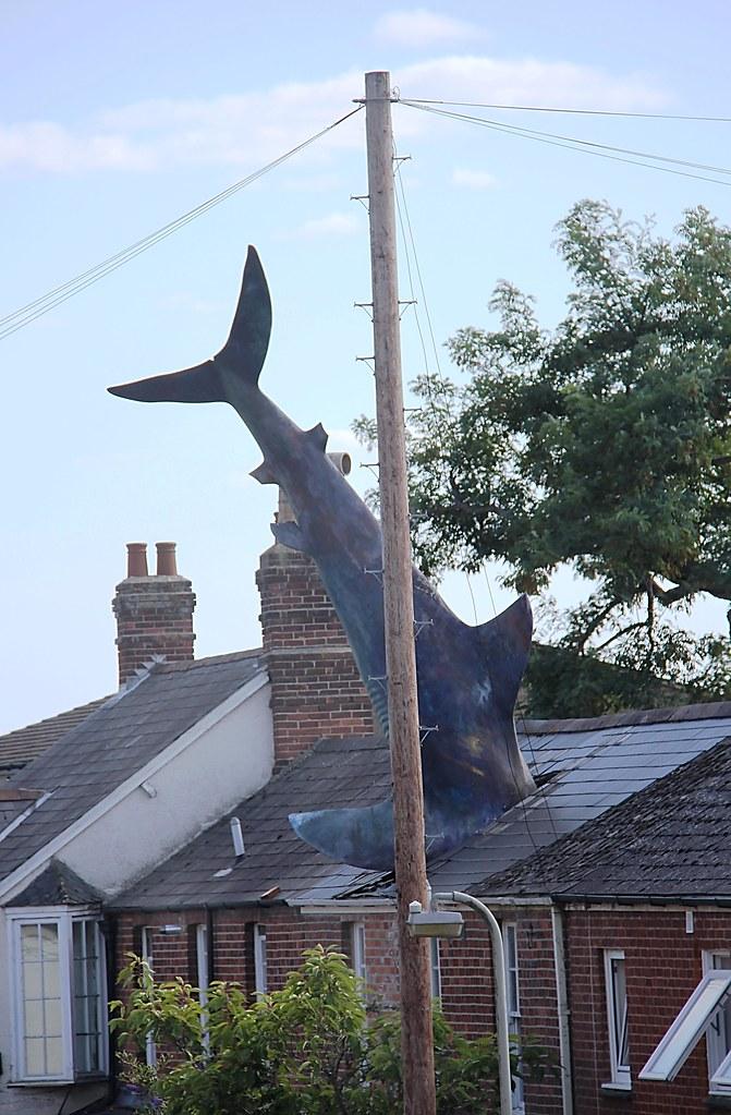 Headington Shark Not The Besty Quality Photo Taken