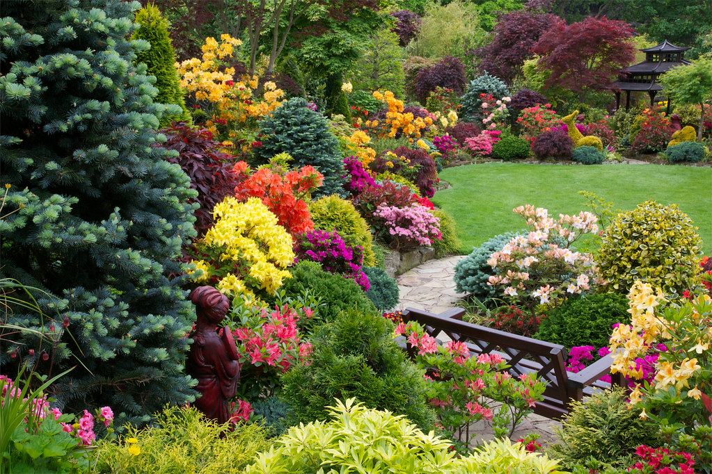 The joy of garden azalea flowers four seasons garden for Gardening 4 all seasons