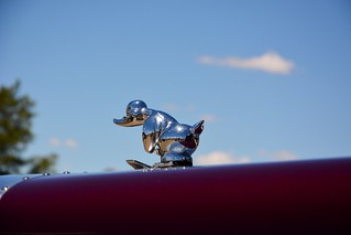 Pete Duck | by quarterdeck888