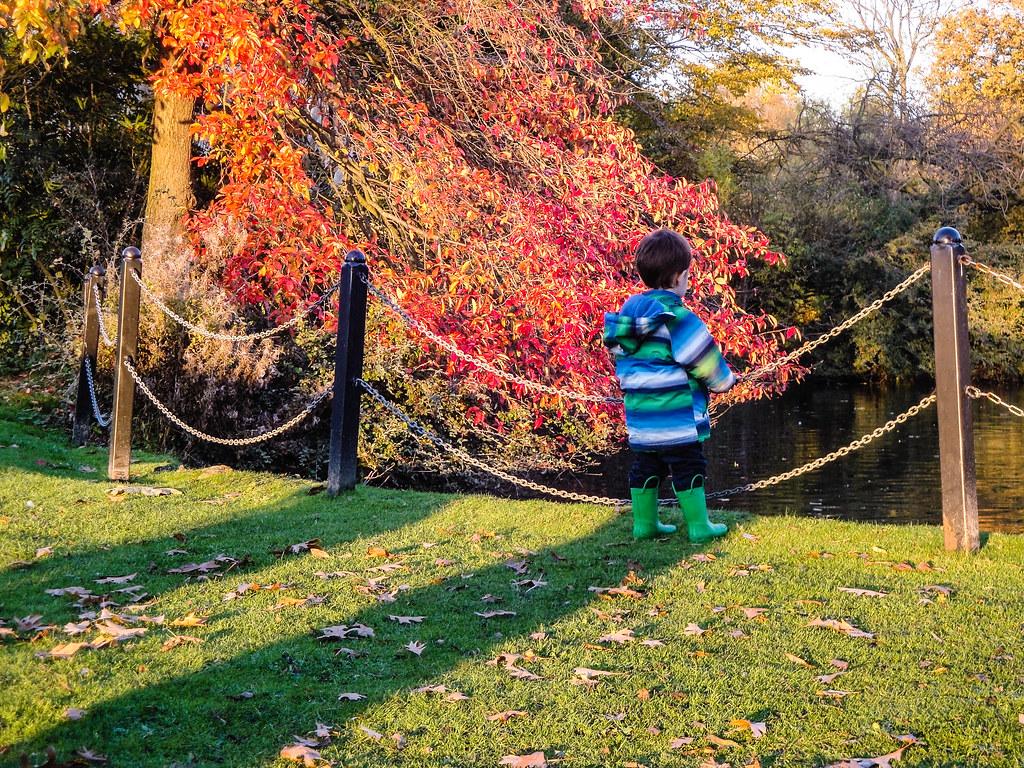 Broomfield park 11 benjamin maga 241 a flickr