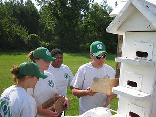 Ycc students checking purple martin houses u s fish and for Martins fish house