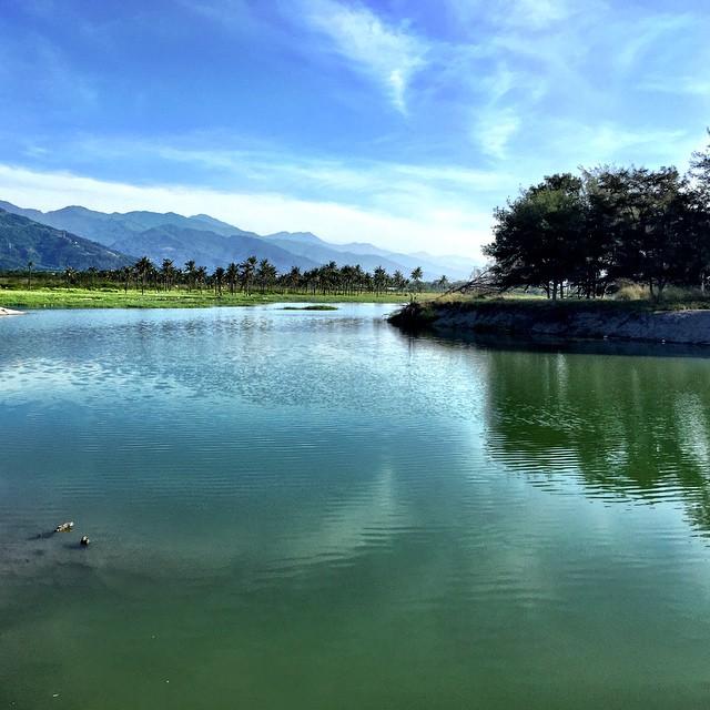 知本濕地擁有天然湧泉和豐富生態,是卡大地布部落的傳統領域,被當地人稱為「夢幻湖」。