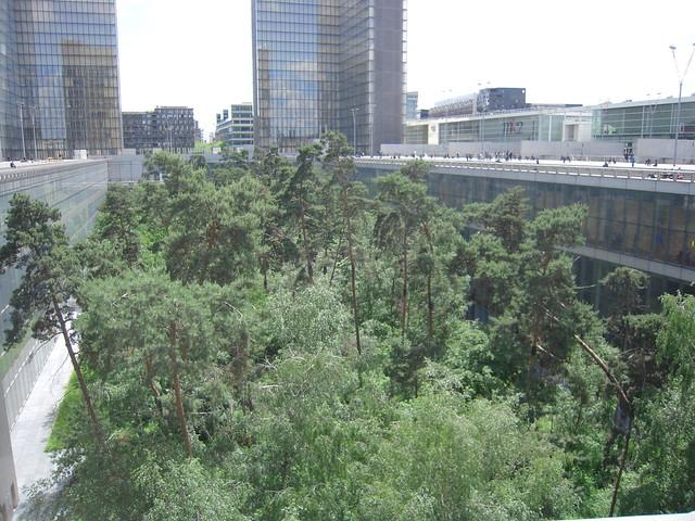 Jardin foret flickr photo sharing for Jardin foret