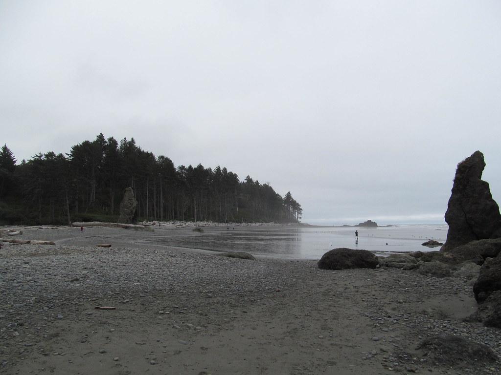 Beach Rights Washington State