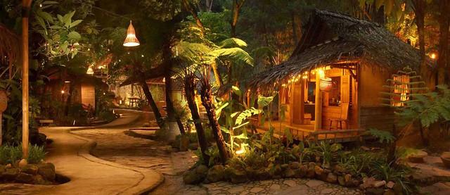 10 kampung daun night