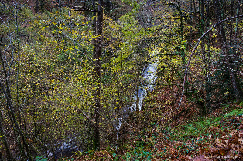 Cascada de Xorroxin a través de los árboles