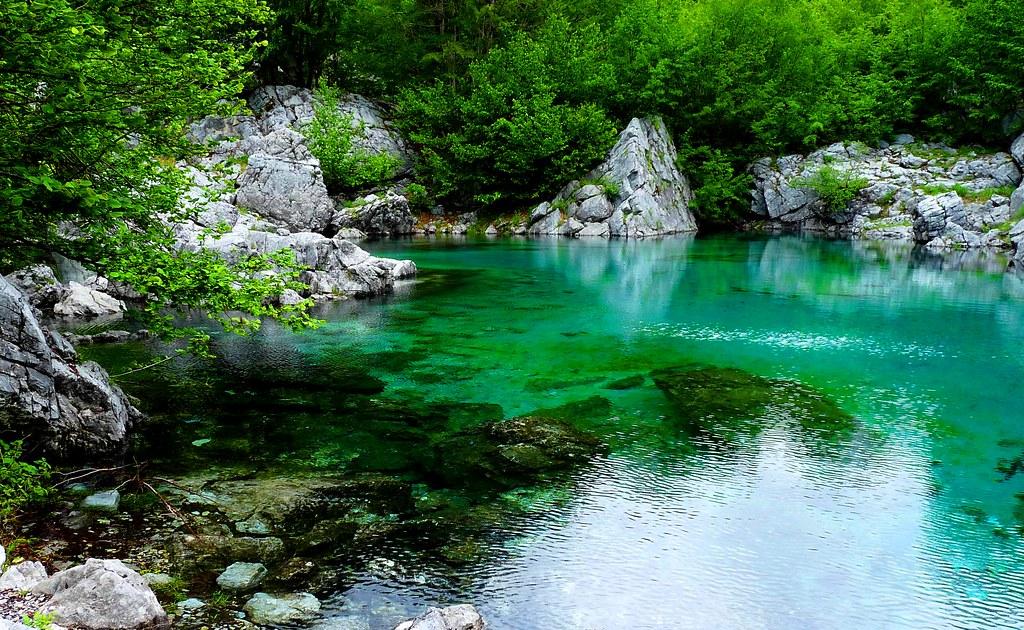 Glacial pond albania valbones dailyshoot taken high in - Plantas para estanques de jardin ...