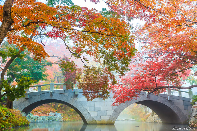 Misty autumn scenery of seonunsa temple south korea flickr photo sharing - Beautiful panoramic view house to take full advantage of the scenery ...