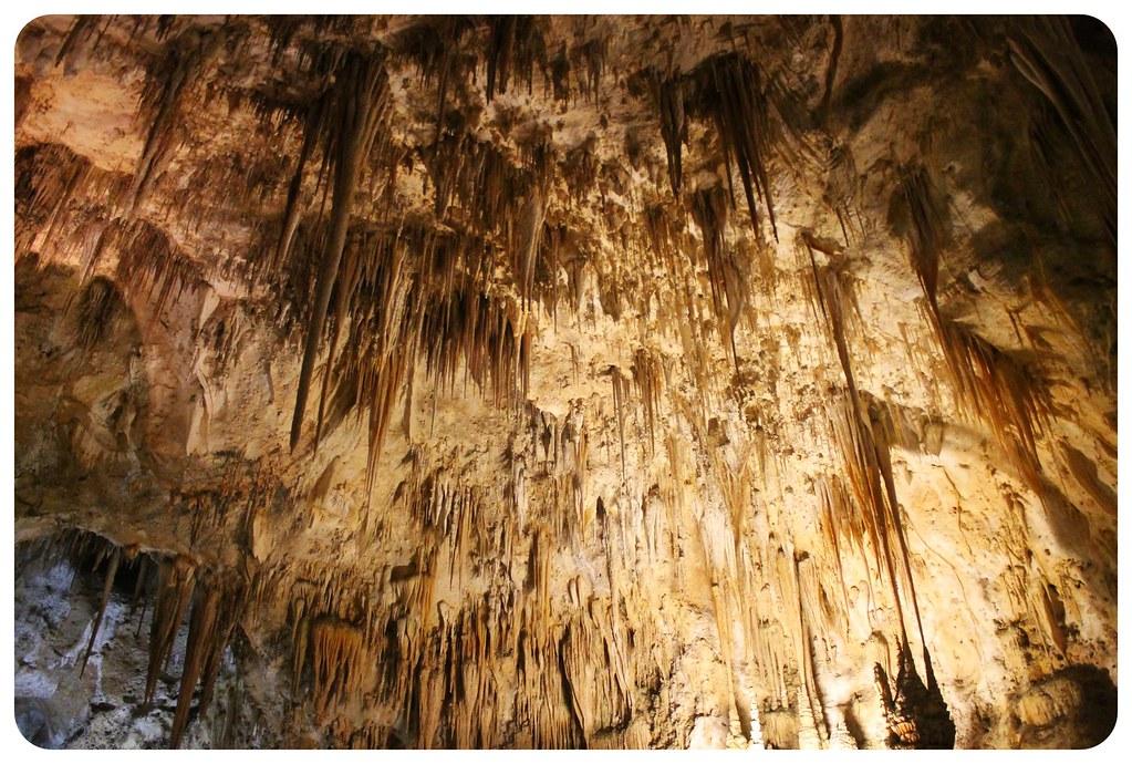 carlsbad caverns stalagtites