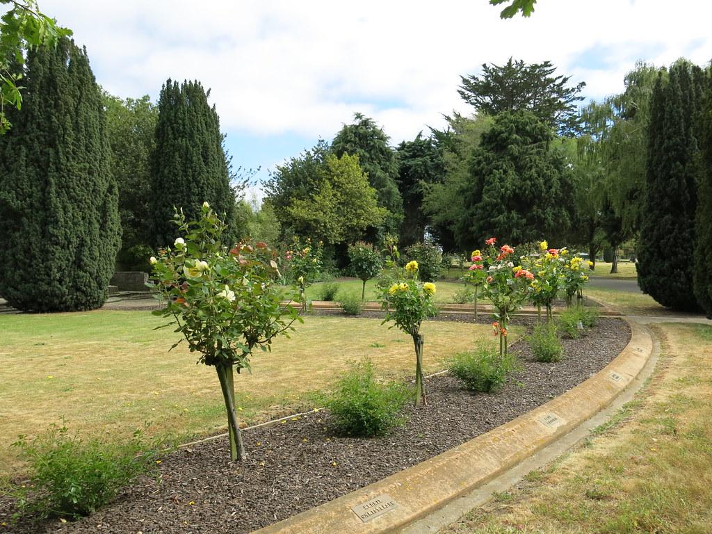 Ballantyne Memorial Rose Garden Ballantyne Memorial Rose