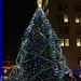Akron 2013 Holiday Tree