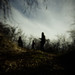 bigfoot-sighting-three-woods.jpg