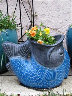 Flowering fish