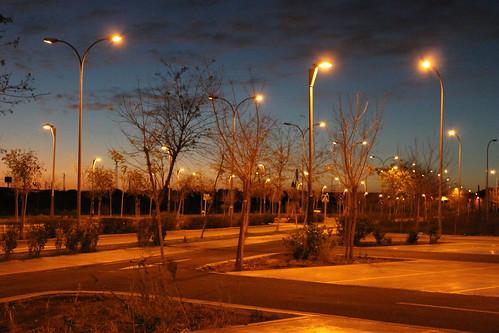 2014.02.02.165 - SEVILLA - Campus Palmas Altas