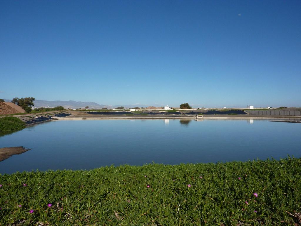 Traitement des eaux us es de l agglom ration du grand agad - Lagunage des eaux usees ...