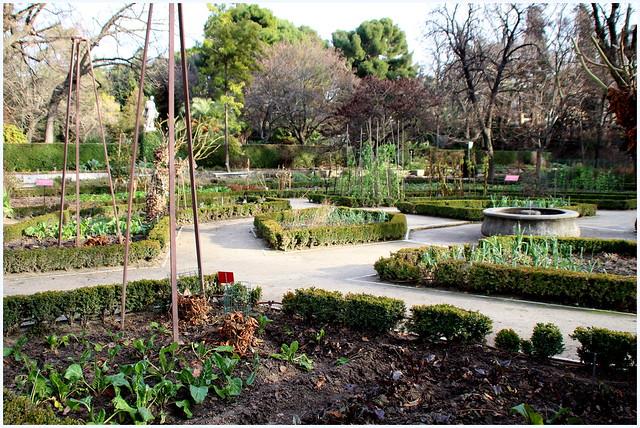 En el jard n bot nico de madrid flickr photo sharing for Jardin botanico el ejido