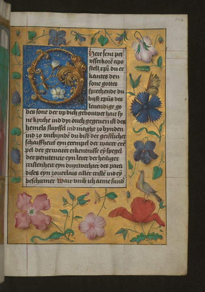 aussem hours foliate initial o with marginal flowers and