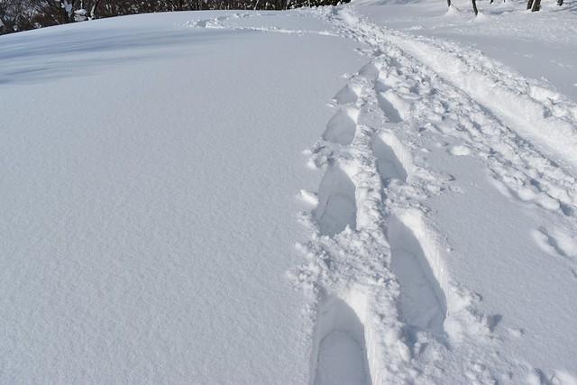 冬の守門岳 スノーシュー登山