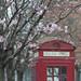 British red box