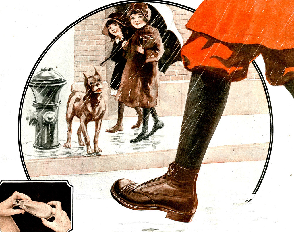 Buster Brown Shoes Dog