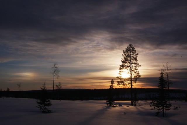 backlit landscape photo