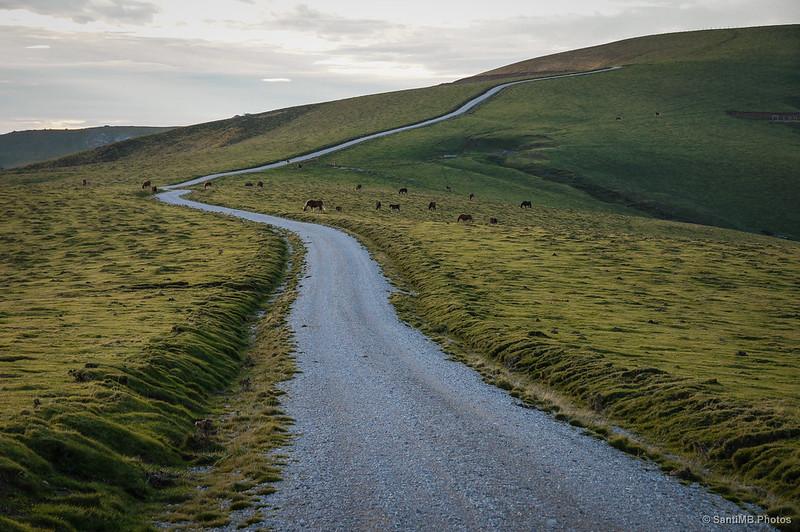 El Alto de Tapla en el camino de regreso desde Casetas de Irati.
