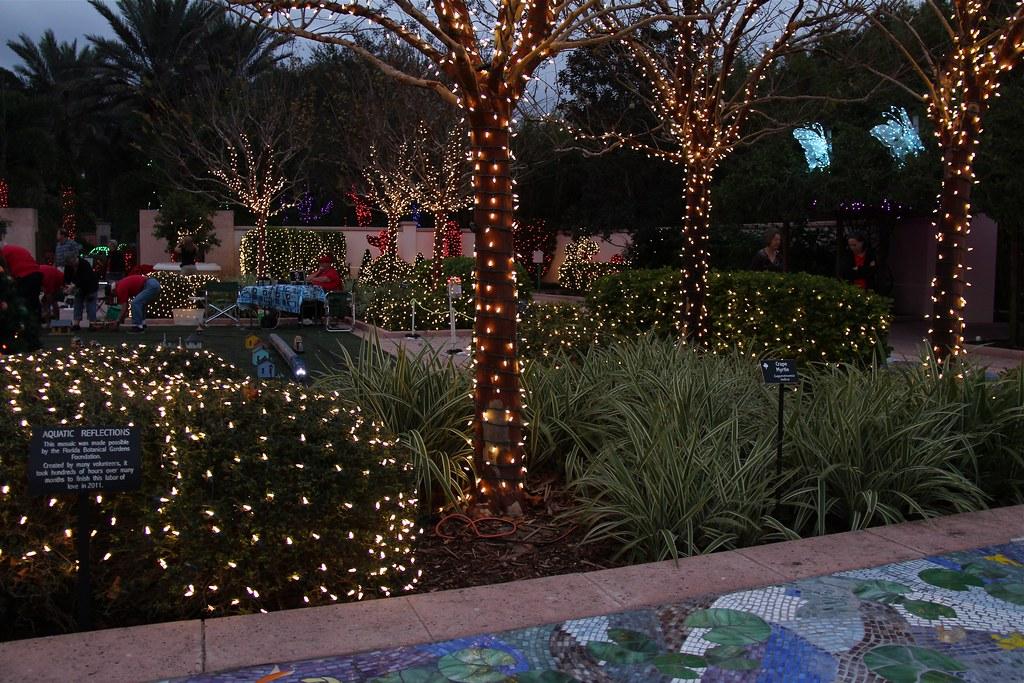 Wedding Garden Florida Botanical Gardens Holiday Lights In Flickr
