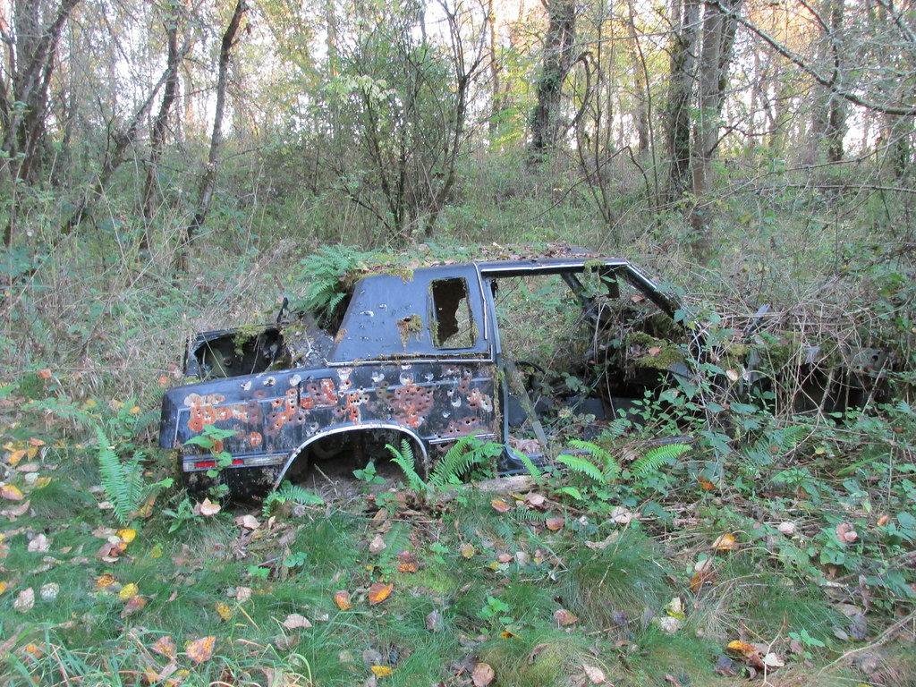 Abandoned car in the woods near columbia slough looks lik for Columbia woods
