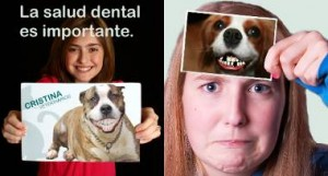 salud-dental-importante-300x161
