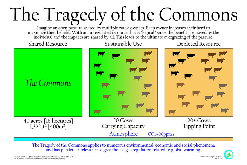 write about something that s important tragedy of the commons essay tragedy of the commons essay burnabycentre com