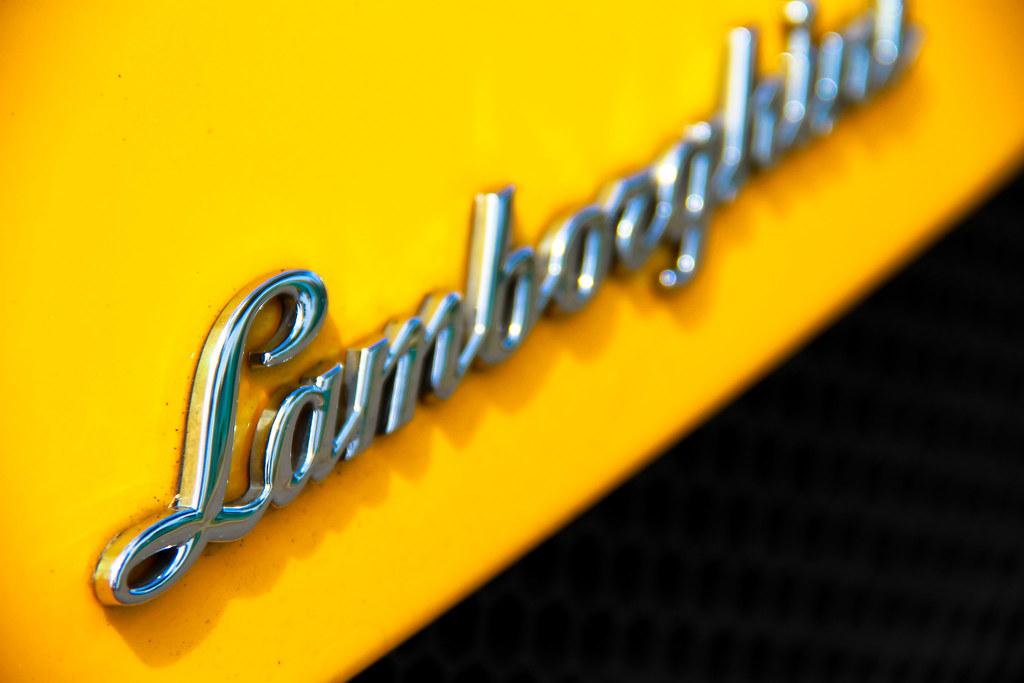 Lamborghini Logo Yellow Lamborghini Gallardo Logo