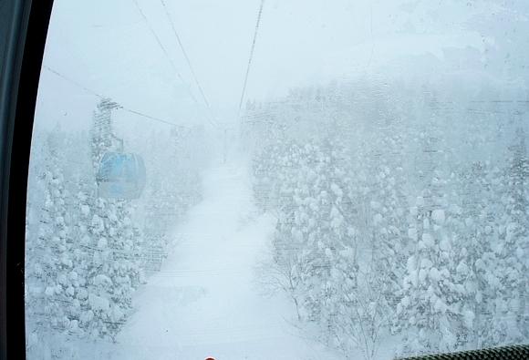 日本森吉山樹冰27