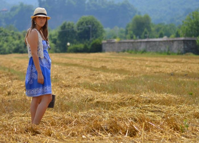 campo di grano (4)