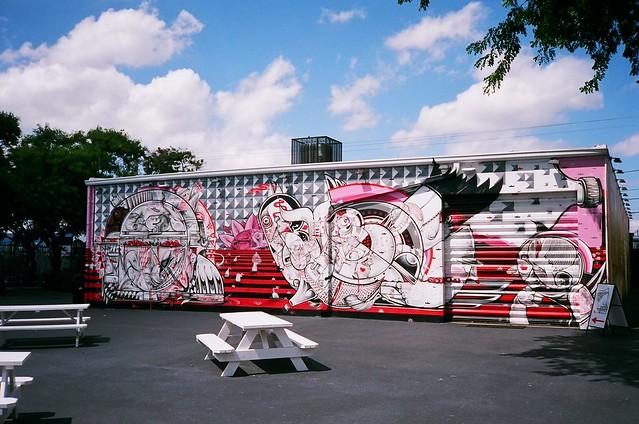 Wynwood mural minolta freedom dual camera and fuji for Mural vision tv