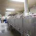Graham Shrimp Company in Bayou La Batre, Ala., during World Food Championships Blogger Summit, Orange Beach, Ala., Nov. 7 - 9, 2016