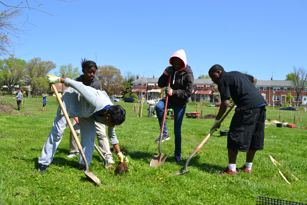 Photo of a Baltimore City tree planting