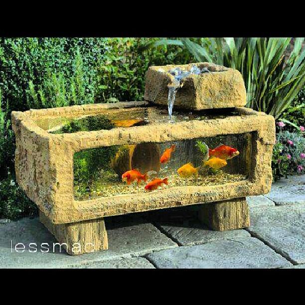 Me gust este acuario para mi jard n funci n de fuente for Peceras de jardin