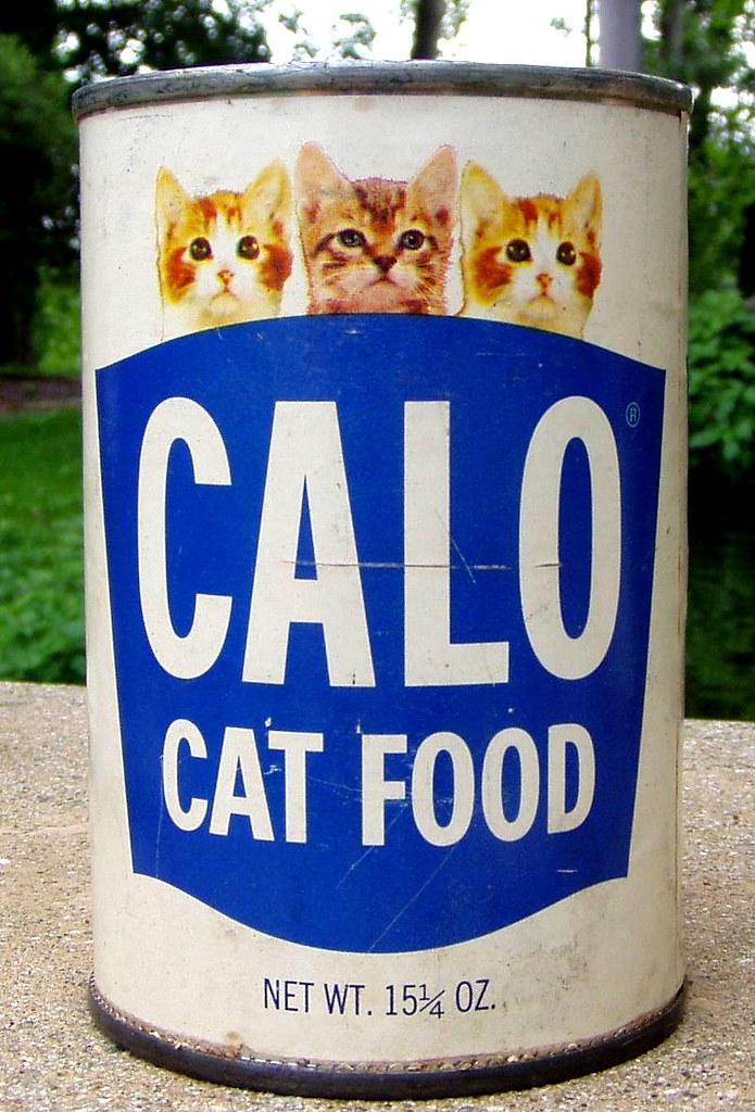 My Cat Can Talk