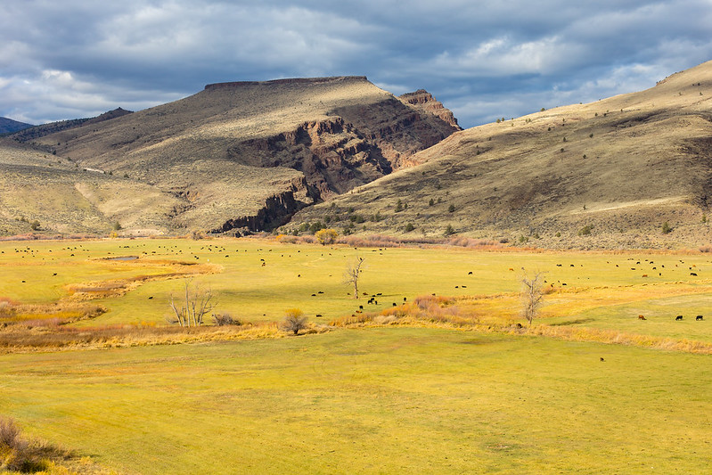 Oregon. John Day Fossil Beds