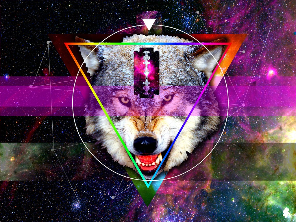 Hipster wolf triangle