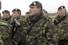 Ukrainian troops in formation