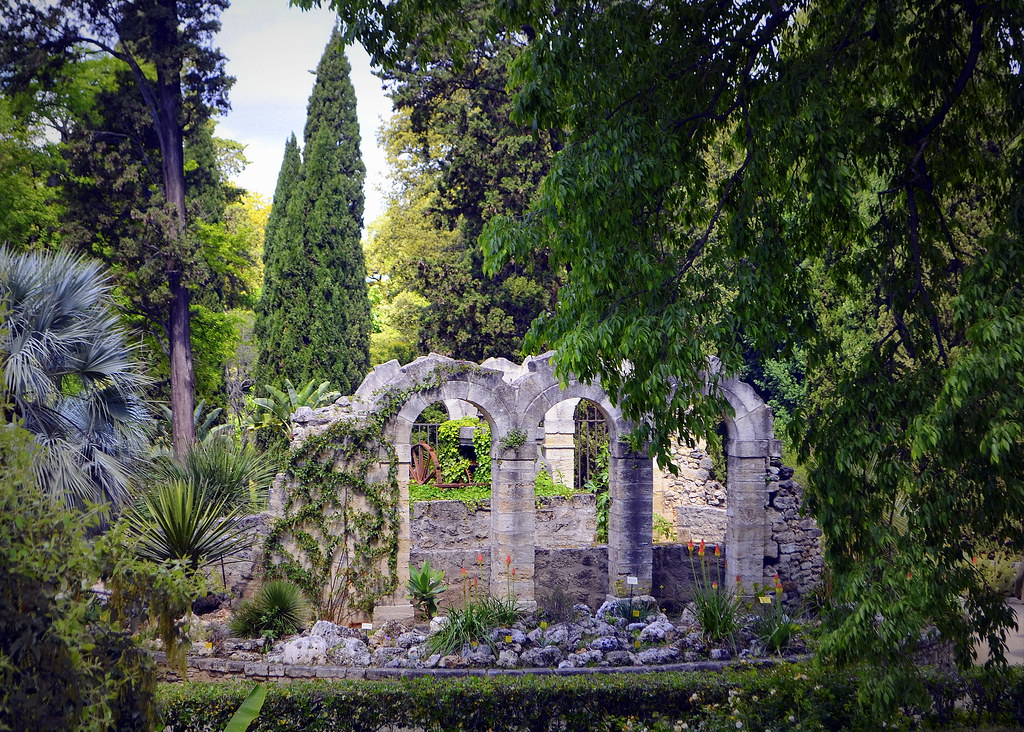 Jardin des plantes montpellier france gwendolyn - Jardin des plantes de montpellier ...