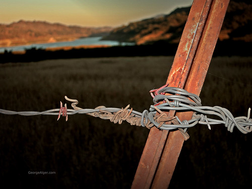 Barbed Wire Lake 2