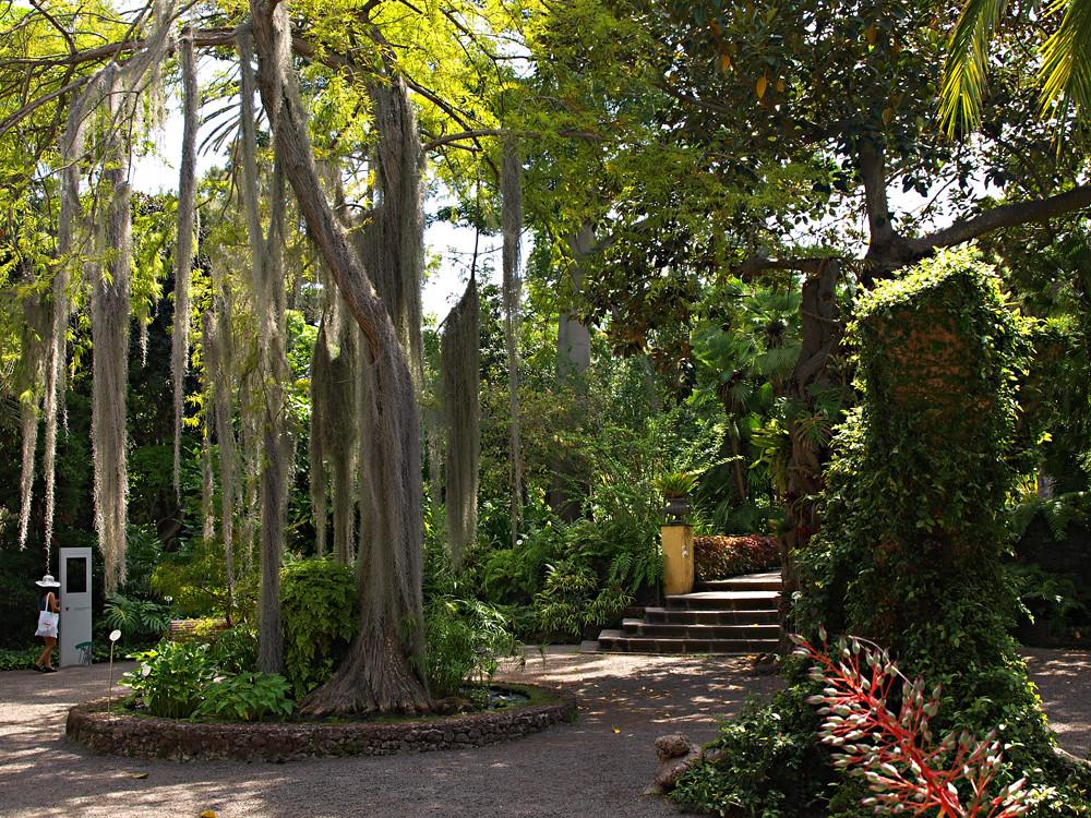 Entrance botanical gardens puerto de la cruz tenerife flickr - Botanical garden puerto de la cruz ...